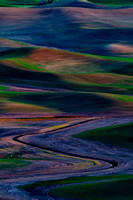 Abstract Landscape in the Palouse
