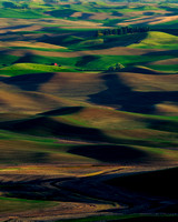 Late afternoon at Steptoe Butte